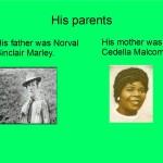 diporama de Bob Marley1